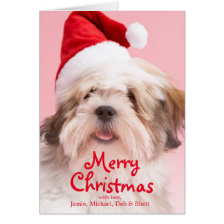 Lhasa Apso Dog Wearing Santa Hat Card