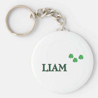 Liam Irish Name Key Ring