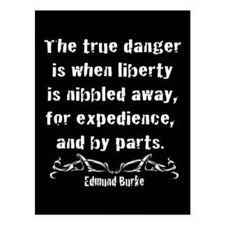 Liberty is Nibbled Away Postcard