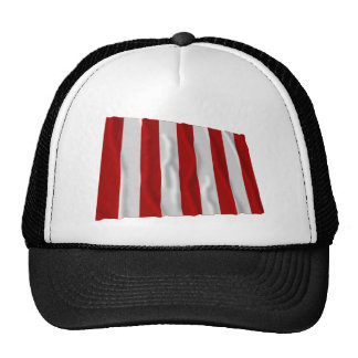 Liberty Tree Flag Cap
