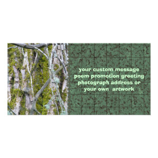Lichen Bark and Branches Photo Card Template