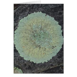 Lichen Mossy Circle Card