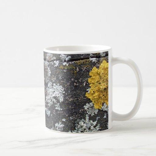 Lichen Mug