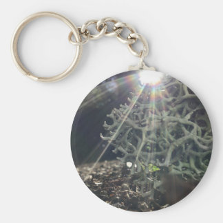 Lichen Rays Key Ring