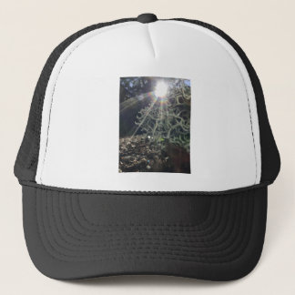 Lichen Rays Trucker Hat