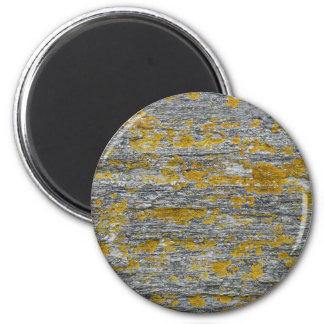 lichens on granite stone magnet