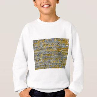 lichens on granite stone sweatshirt