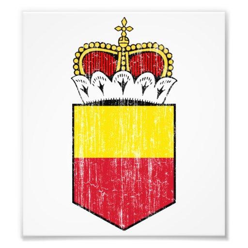 Liechtenstein Lesser Coat Of Arms Photograph