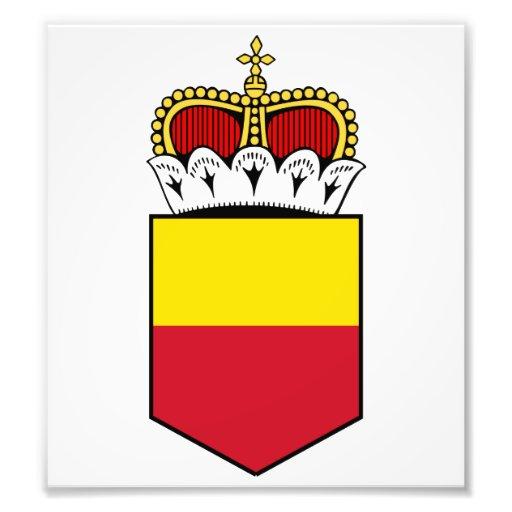 Liechtenstein Lesser Coat Of Arms Photographic Print