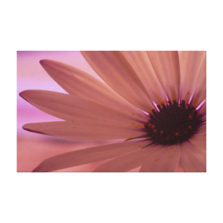 Life Stretched Canvas Print