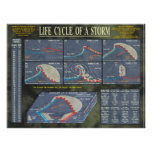 Life Cycle of a Storm Posters