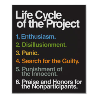Life Cycle of the Project Poster