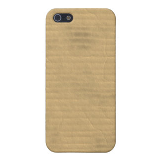 Life in a Grungy Dirty Beat-up Worn Cardboard Box iPhone 5/5S Cases