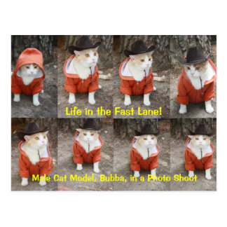 Life in the Fast Lane! Postcard