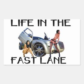 LIFE IN THE FAST LANE STICK RECTANGULAR STICKER