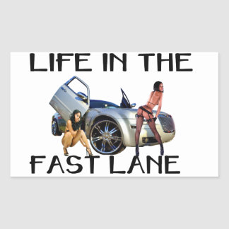 LIFE IN THE FAST LANE STICK RECTANGLE STICKERS