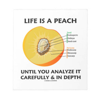 Life Is A Peach Until You Analyze Carefully Depth Notepads