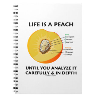 Life Is A Peach Until You Analyze Carefully Depth Spiral Notebook