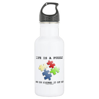 Life Is A Puzzle Have You Figured It Out Yet? 532 Ml Water Bottle