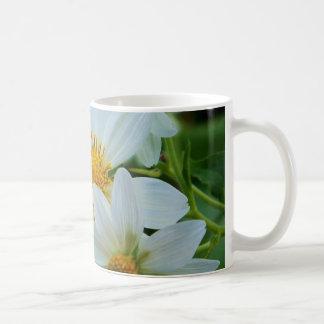 Life is Beautiful Mugs