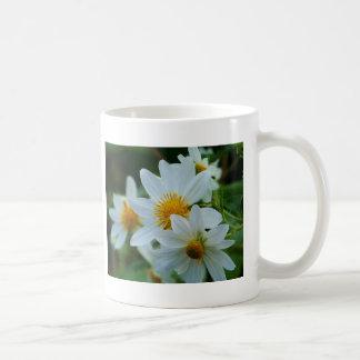 Life is Beautiful Coffee Mugs