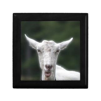 life is goat small square gift box