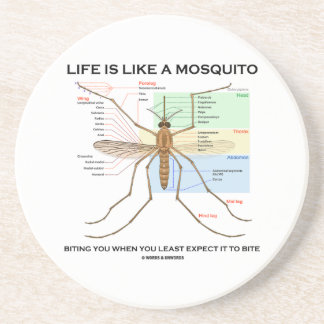 Life Is Like A Mosquito Biting You When You Least Coaster