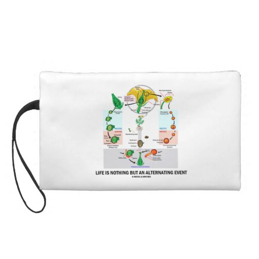 Life Is Nothing But An Alternating Event Wristlet Purse