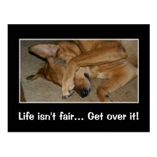 Life isn't fair to anyone you big crybaby postcard