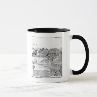 Life of a Mandarin Mug