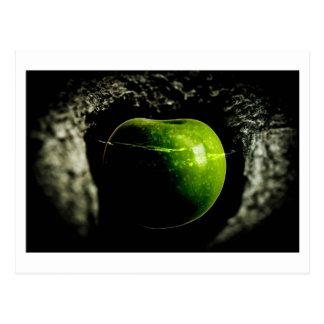 life on the apple postcard