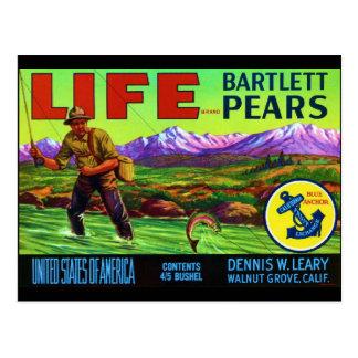 Life Pears Postcard