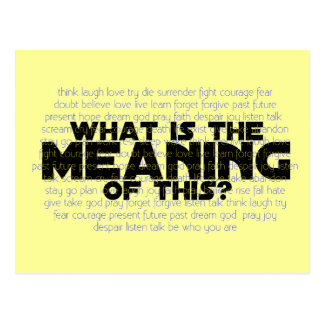 Life: What is the Meaning of This? Postcard