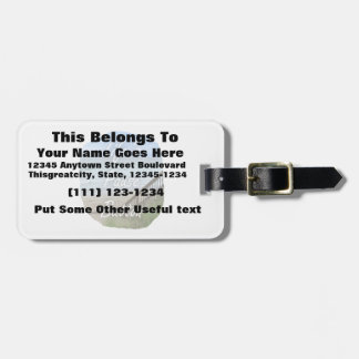 Lifes Pause Button beach ocean florida image Tags For Bags