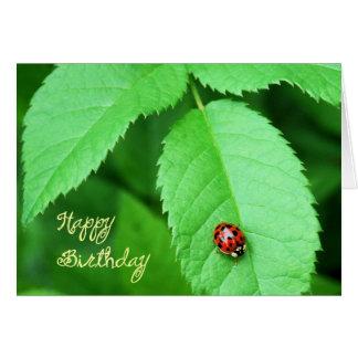 Life's Simple Pleasures-ladybug Card