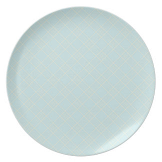 Light Baby Blue Plaid Plate