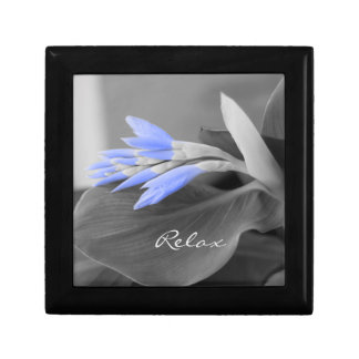 Light Blue Buds selective color Small Square Gift Box