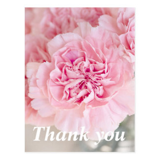 Light gentle pink Peony Thank you Postcard
