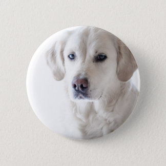 Light Golden Retriever 6 Cm Round Badge