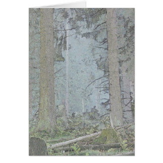 Light in a spruce forest card