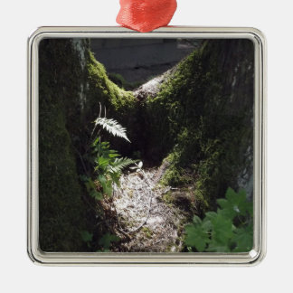 Light in the Forest Silver-Colored Square Decoration