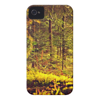 Light in the Forest iPhone 4 Case-Mate Case