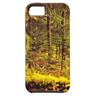 Light in the Forest iPhone 5 Covers