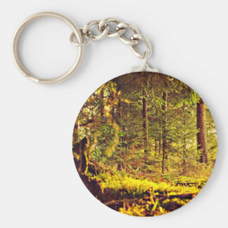 Light in the Forest Key Ring