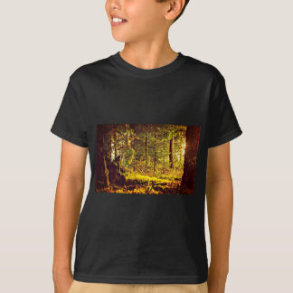 Light in the Forest T-Shirt