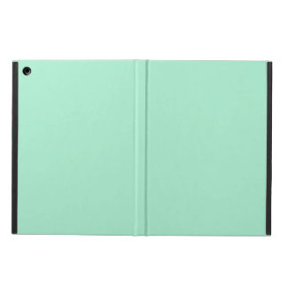 Light Mint Formal Colored iPad Air Case
