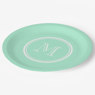 Light Mint Green High End Colored Matching 9 Inch Paper Plate