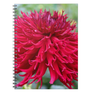 Light My Fire Spiral Note Book