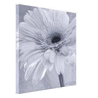 Light Pale Blue Daisy Flower Canvas Prints