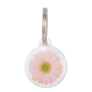 Light Pink Daisy on White Personalized Pet Tag
